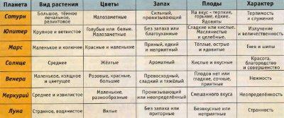 ВЕДИЧЕСКИЕ ОСНОВЫ ИСЦЕЛЕНИЯ ТРАВАМИ. ЧАСТЬ 2
