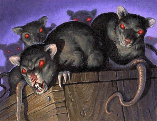 krysy-zhut