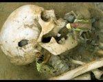 Запретная археология. Исчезнувшие великаны