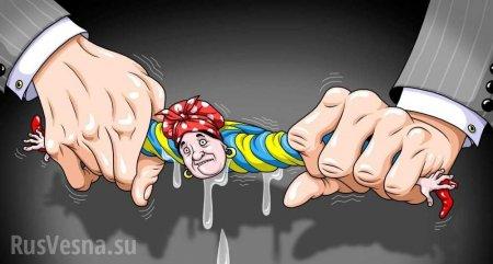новости Украины и Новороссии