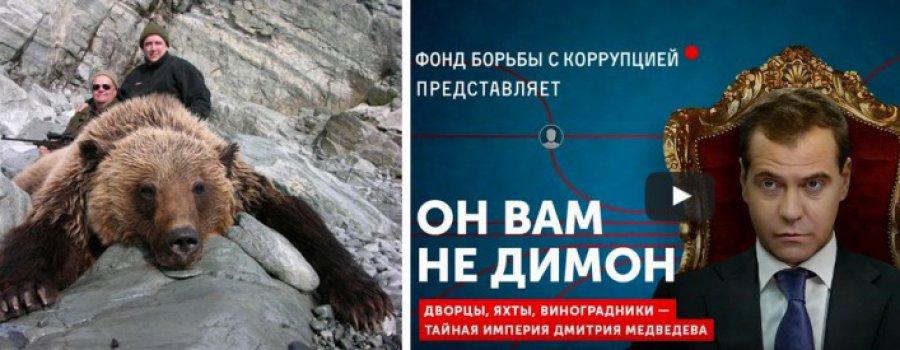 """В России проходит антикоррупционная операция """"Медвед""""!"""