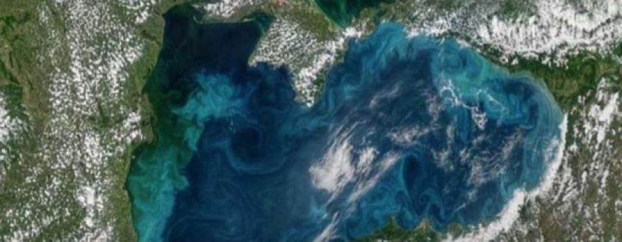 Черное море стало бирюзовым