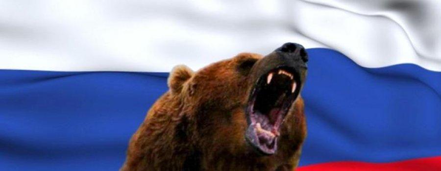 Славянский характер или Почему русских называют медведями?