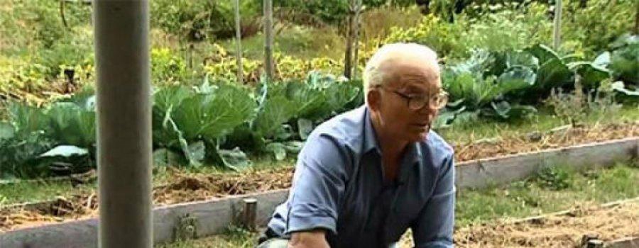 Без лопаты 20 лет: умный огород Замяткина