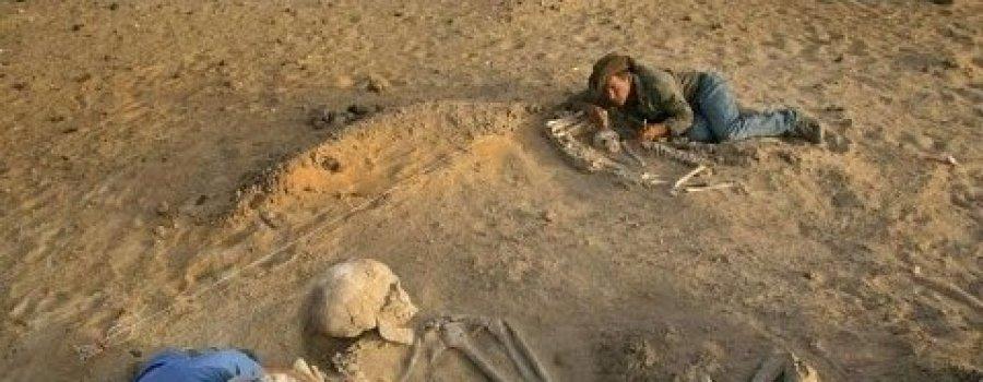 Выставка останков гигантского человека. Александр Белов