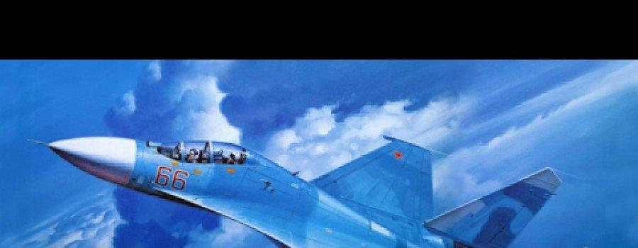 Бесспорная победа русских. Русские СУшки уделали американские F-15