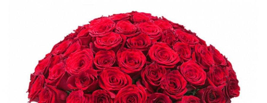 Значение роз разного цвета, символизм букета
